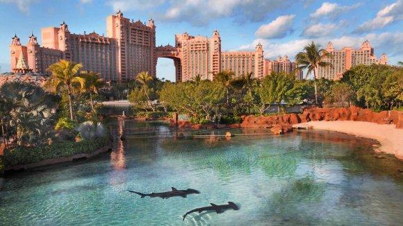 Atlantis_shark waterway