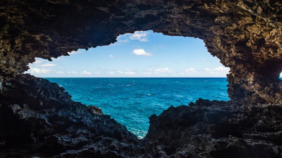 BarbadosAnimalFlowerCave