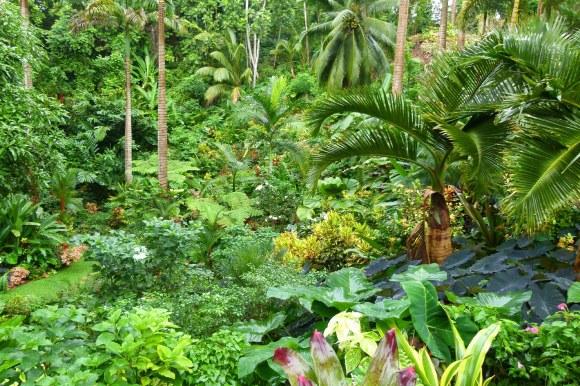 BarbadosHuntes-Gardens-2